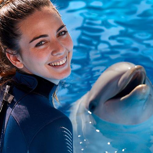 Encuentro con delfines