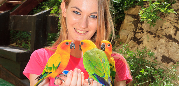 Photos with<br /> parakeets