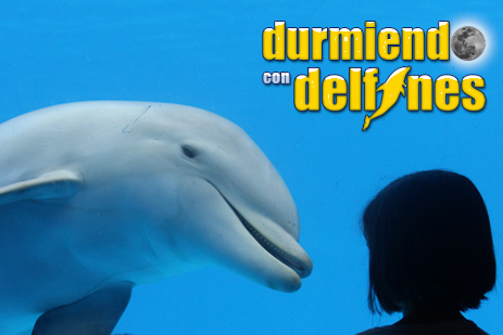 Durmiendo con Delfines en Mundomar