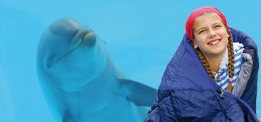 Dormir con delfines