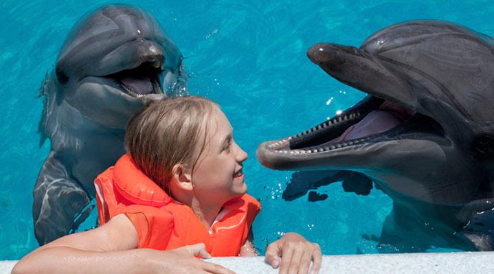 14 años de delfinoterapia en Mundomar Benidorm