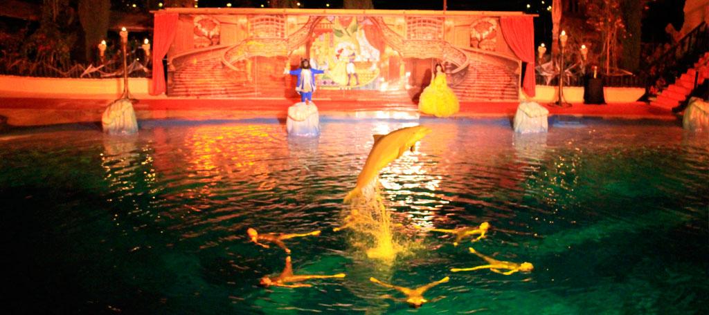 Noche de halloween en Mundomar: show exclusivo de delfines y cena temática