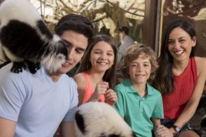 familia sentada con lemures en mundomar