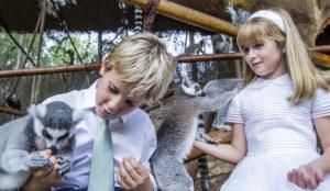 Niña y niño con sus trajes de comunión dando de comer a los lemures
