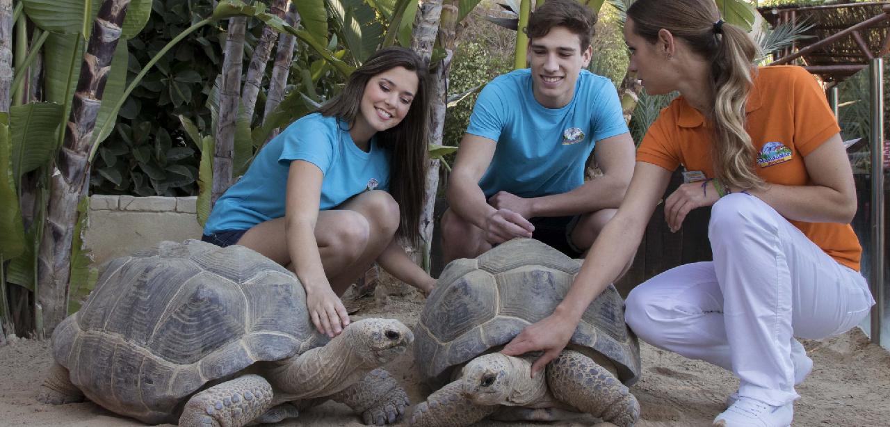 Cómo se trabaja el enriquecimiento ambiental con los animales en Mundomar
