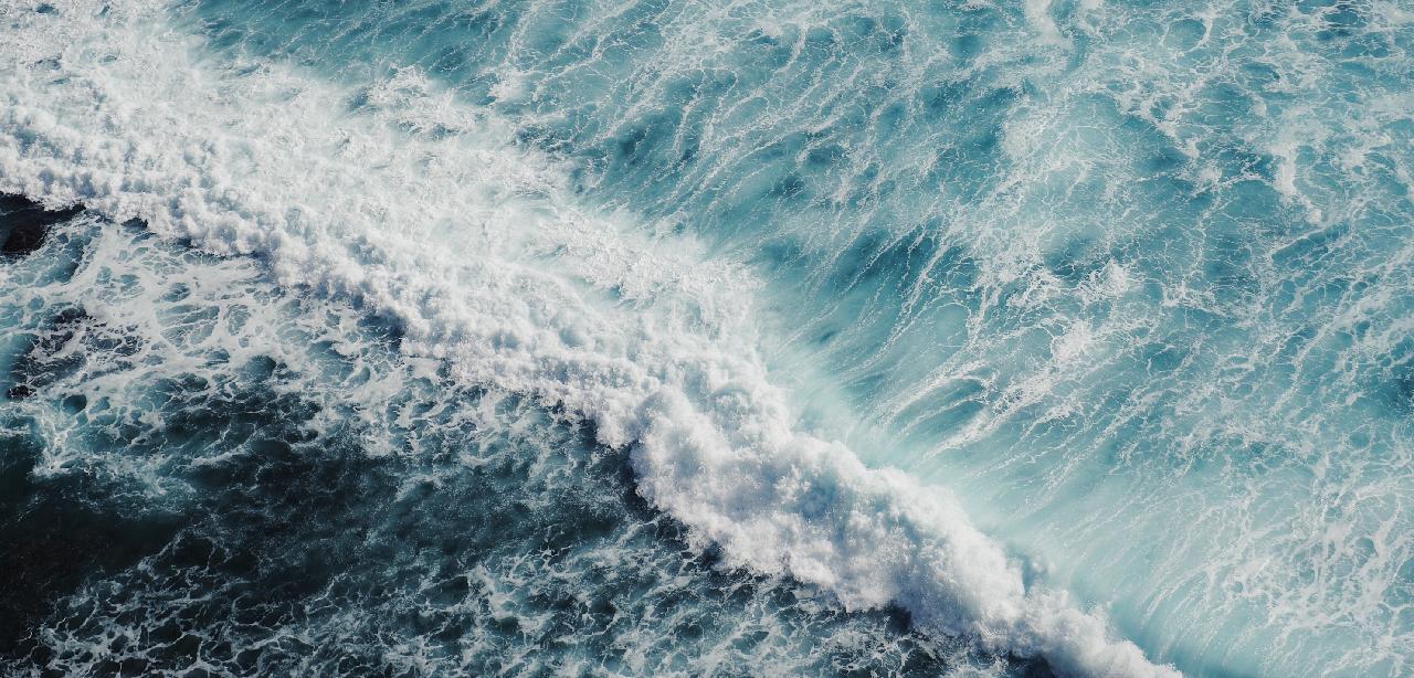 Día mundial de los océanos en Mundomar