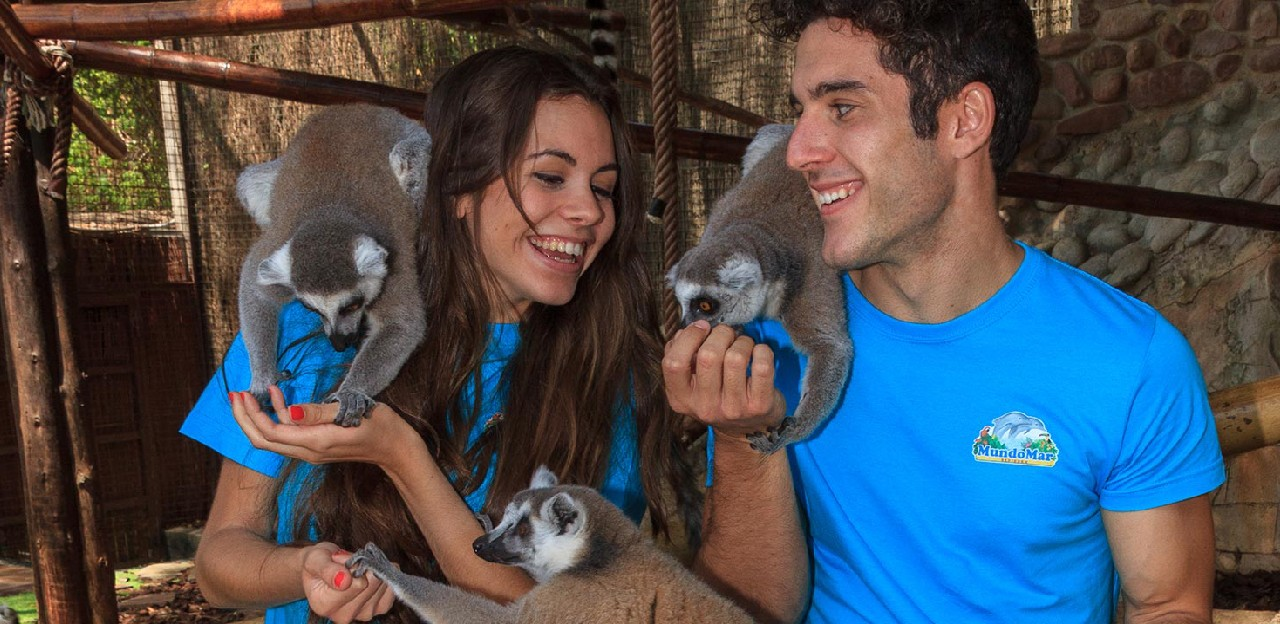 Dos personas disfrutando de Animal Experience junto a lemures catta